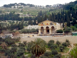 mount-of-olives-01